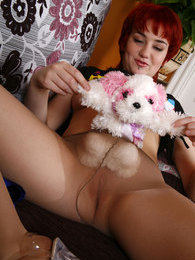 Naughty babe plays with her plush toys sliding them into her lacy pantyhose pictures at lingerie-mania.com