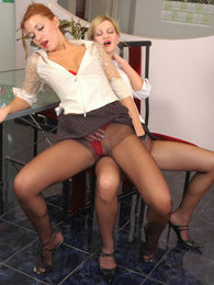 Lascivious secretary babes fervently rubbing their pantyhose clad pussies pictures
