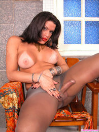 Lusty shemale can't hide her boner in her grey hose while posing on stool pictures at kilosex.com