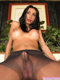 Salacious shemale with yummy boobs posing topless in control top pantyhose pictures at reflexxx.net