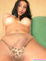 Richly endowed shemale flashing her throbbing cock through shiny pantyhose pictures
