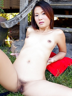 Free Asian Porn Movies and Free Asian Sex Pictures
