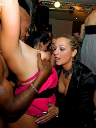 Strippers shagging drunk hotties at a giant fucking club pictures