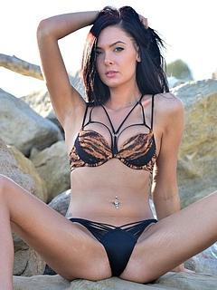 Free Bikini Sex Pictures and Free Bikini Porn Movies