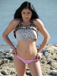 Cierra strips down at the beach pictures