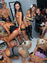 Intoxicated horny chicks drilled by giant boners hardcore pictures at dailyadult.info