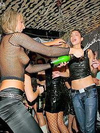 Naughty hot drunk girls drinking and fucking at parties pictures at freekiloclips.com