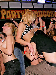 Sexy chicks playing with peckers at a gigantic sex party pictures at lingerie-mania.com