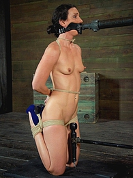 Wenona Sweats pictures at dailyadult.info
