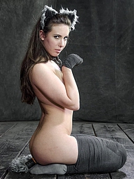 In Heat pictures at find-best-videos.com