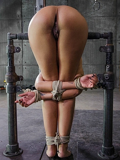 Free Bondage Sex Pics and Free Bondage Porn Movs