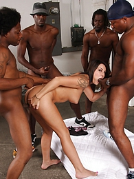 Brunette Chayse Evans is birthday gift gets black gangbanged pictures at find-best-lingerie.com