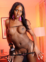 Chocolate tgirl posing in sexy fishnet pictures at lingerie-mania.com