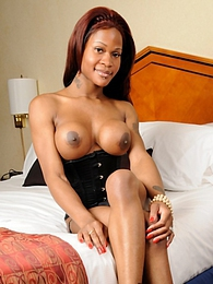 Ebony shemale posing in a hotel room pictures at find-best-tits.com