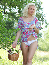 Gorgeous blonde teen chick with a basket of peaches taking off clothes outdoor on the nature. pictures