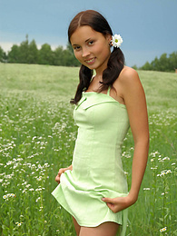 Marvelous nude babe with two pretty ponytails has a walk in the field of chamomiles and fondles her tender skin with them. pictures