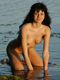 Tremendous nude angel is posing at the seaside with a tiger shawl and splash around in the warm marine water. pics