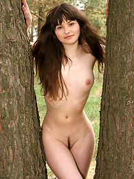 Stunning brown-eyed babe has a walk in the coniferous wood and poses nude among green pines and spruces. pictures at find-best-mature.com