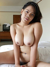 Chubby Thai babe with beautiful heavy-hangers pleasing white traveler in hotel room pictures