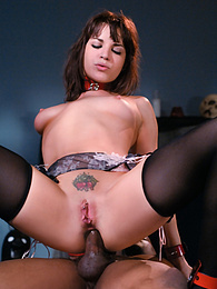 Sexy Brunette in Stockings Enjoys Anal in a Hot BDSM Scene pictures at freekilosex.com