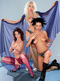 Nikky Blond, Judith Fox & Tera Bond play with two cocks pictures