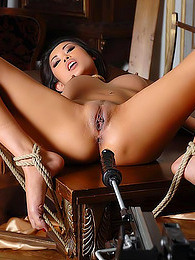 Glamorous lesbian dominates sexy submissive pictures at nastyadult.info