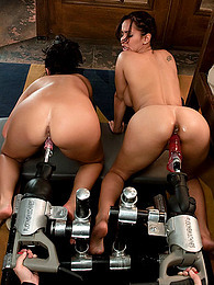 Two chicks with toy machines pictures