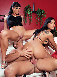 Simony Diamond, Kyra Black & Zuleidy Share a Hungry Cock pictures