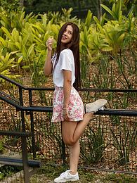 Paloma Andaquies Flores Colom... pictures