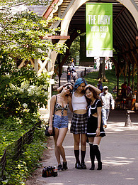 Central Park Salad pictures