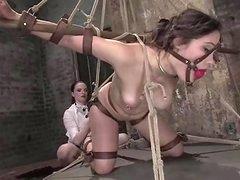 Bravo BDSM